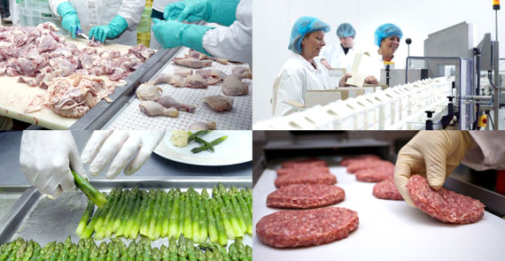 Food safety certifications and services