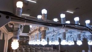 UL LED Lighting