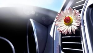 UL looks to improve the interior air quality in vehicles through testing protocols and standards