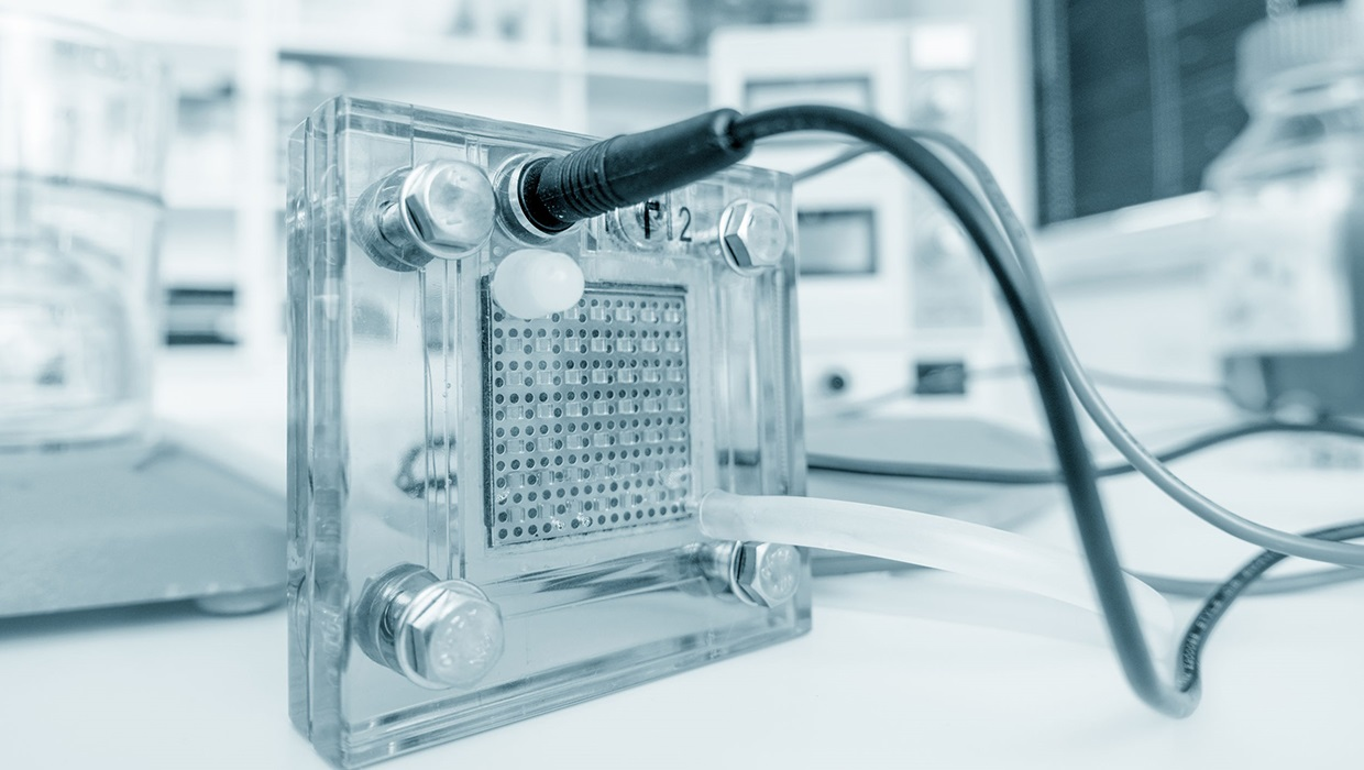 UL backs hydrogen fuel  as an energy of the future