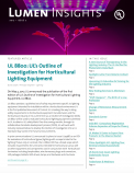 Lumen Insights, 2017 - Issue 2